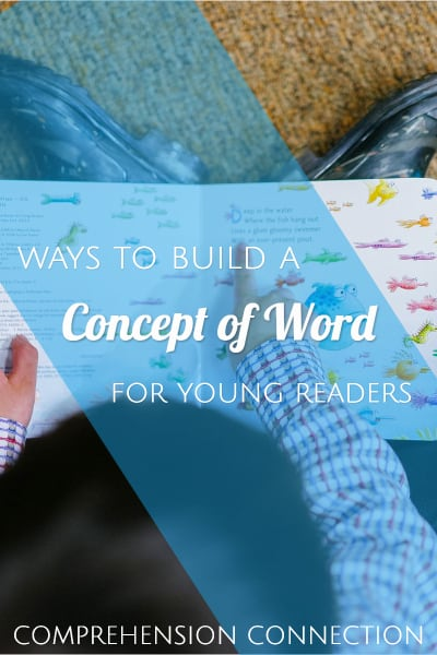 concept-of-word-strategies