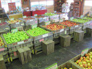 bins-in-retail-1-300x225-3562739