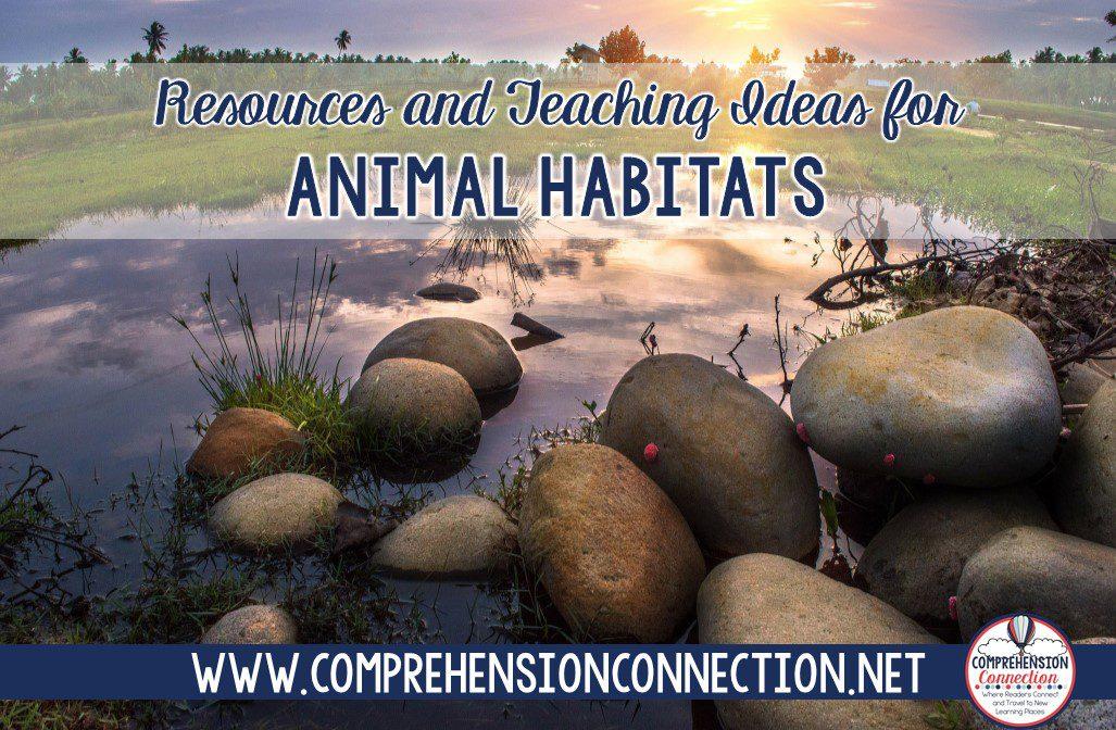 animal2bhabitats-5697671