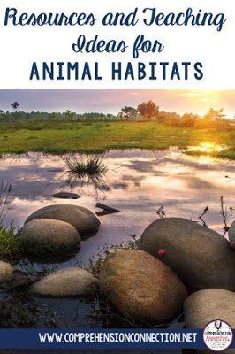 animal2bhabitats2bpin-7804001