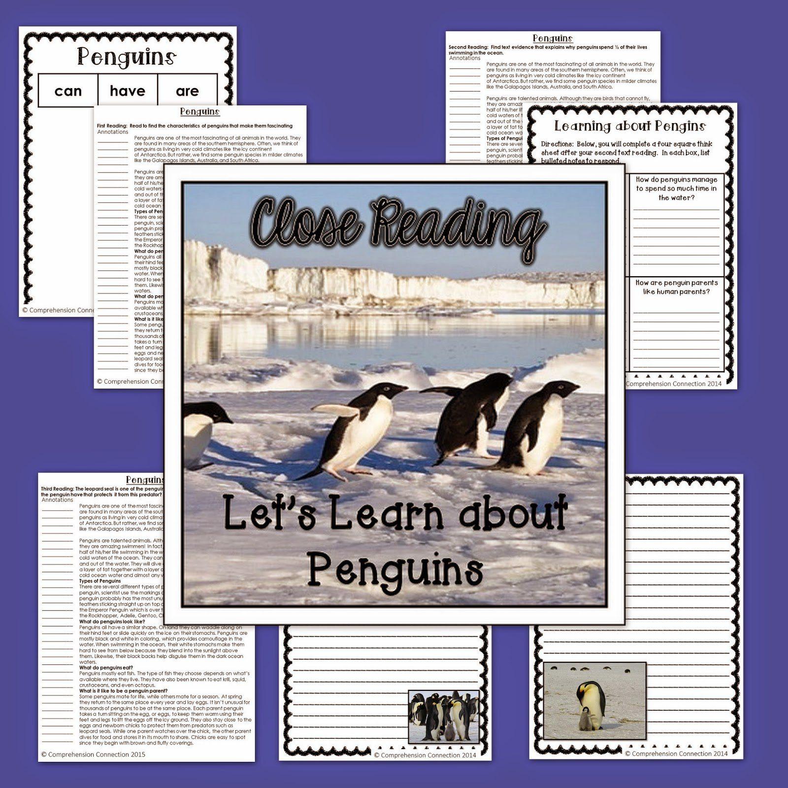 penguins2binformational2btext-8103356