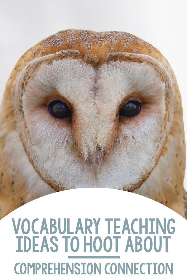 vocabulary2bideas2bto2bhoot2babout2bpin-6358310