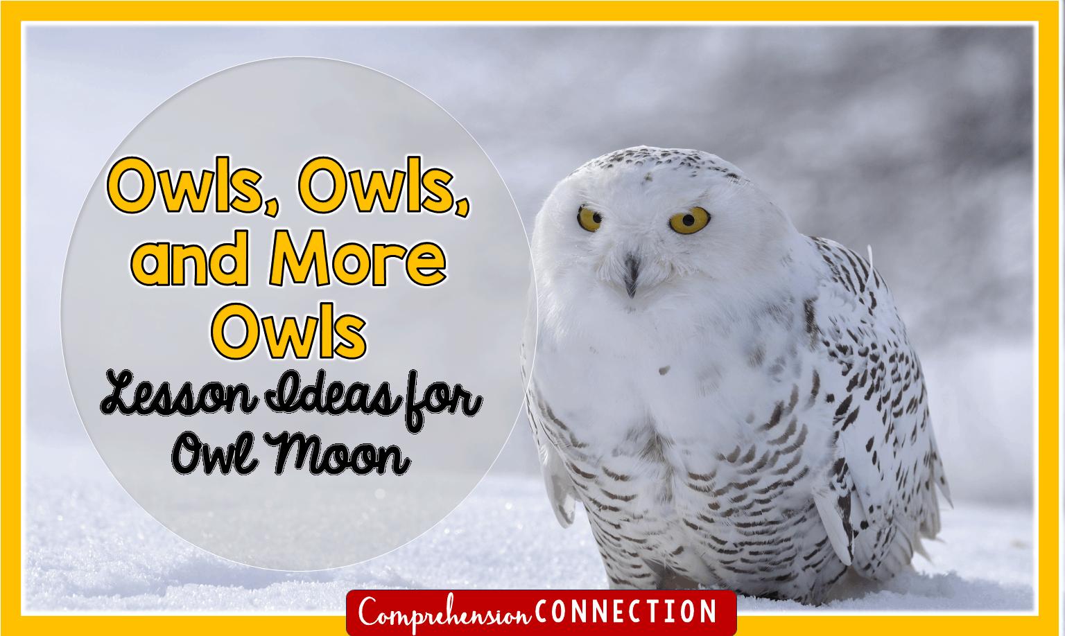 owl2bmoon-9102691