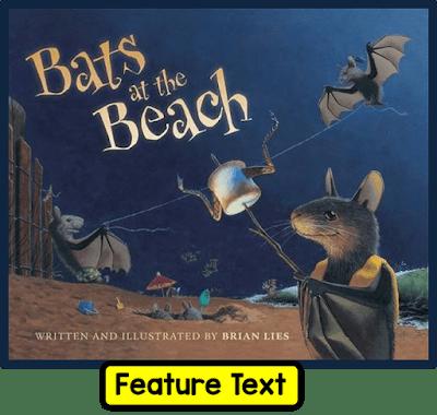 bats2bat2bthe2bbeach-8592170